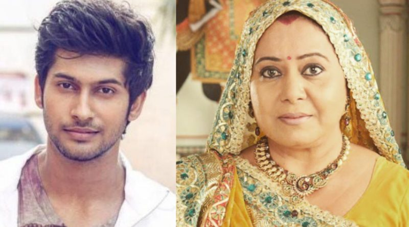 Neelu Vaghela-Namish Taneja pair will be seen again on the small screen